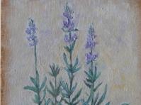 Lawenda 24x18 cm,obraz olejny ,płótno,w kolekcji prywatnej