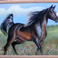 Koń,100x70 cm,autor Tadeusz Małecki