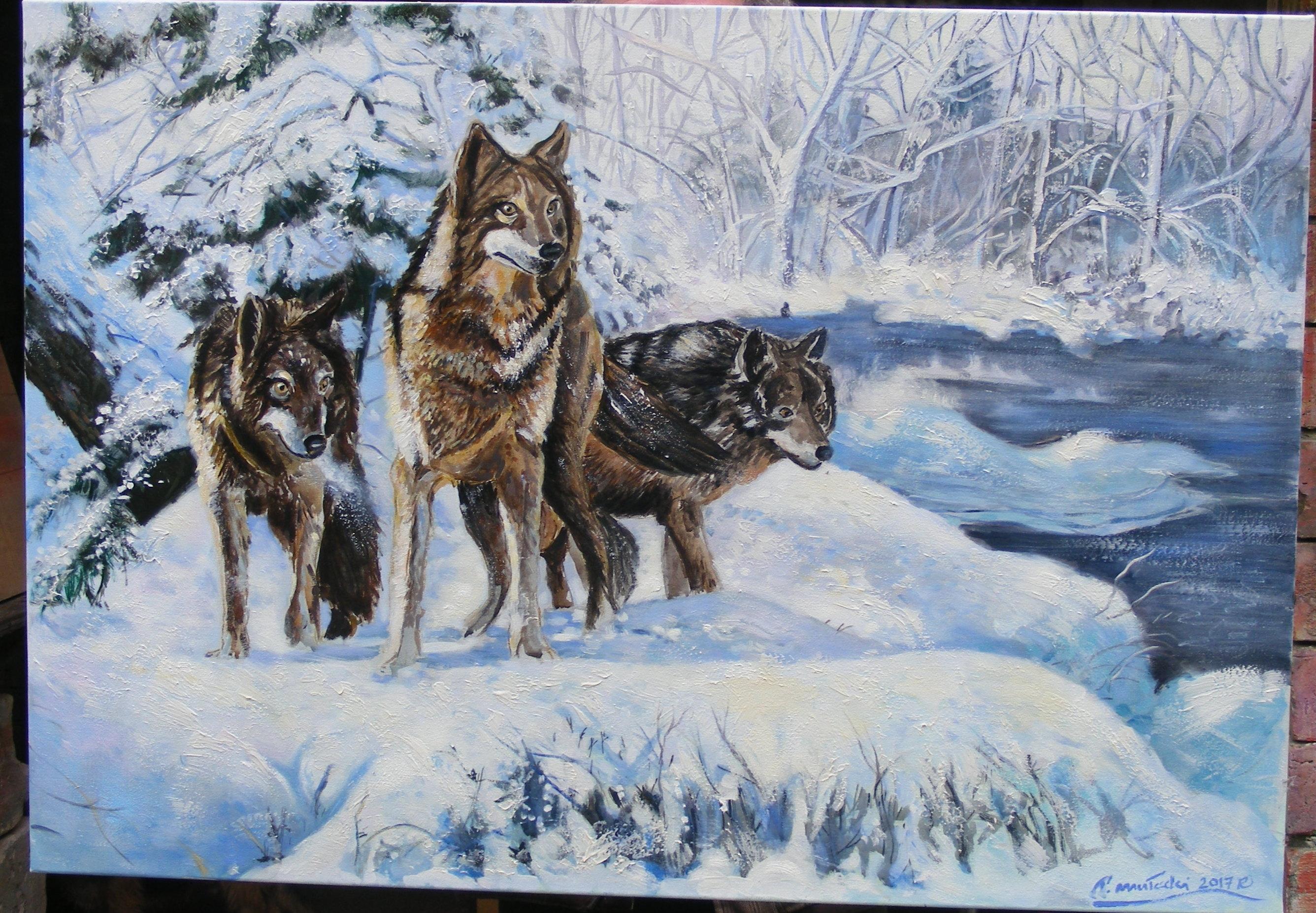 Wilki ,100x70 cm ,olej ,płótno,obraz w kolekcji prywatnej