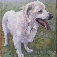 Portret 30x40 cm ,olej,autor Tadeusz Małecki